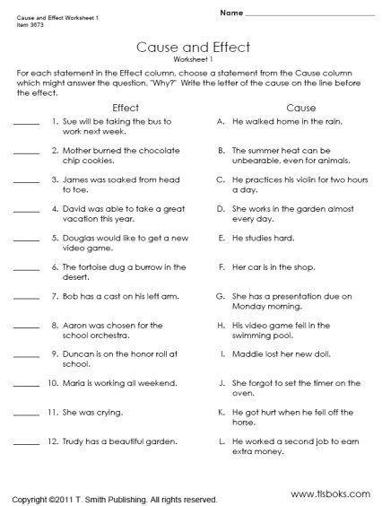 snapshot essay example