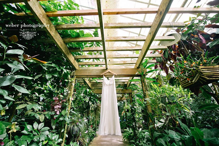 Marie Selby Botanical Gardens Wedding | Selby Gardens Wedding ...