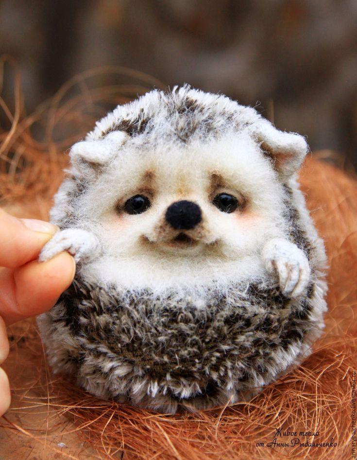 Kaufen Sie Igel Glomerulus weiß, beige, grau Cute baby