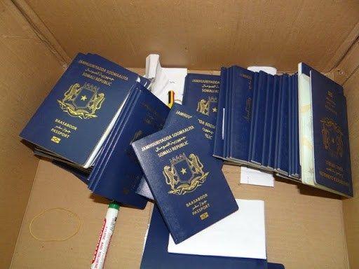 Real Produce Fake Documents Passports – Of Like Type Passport Docs