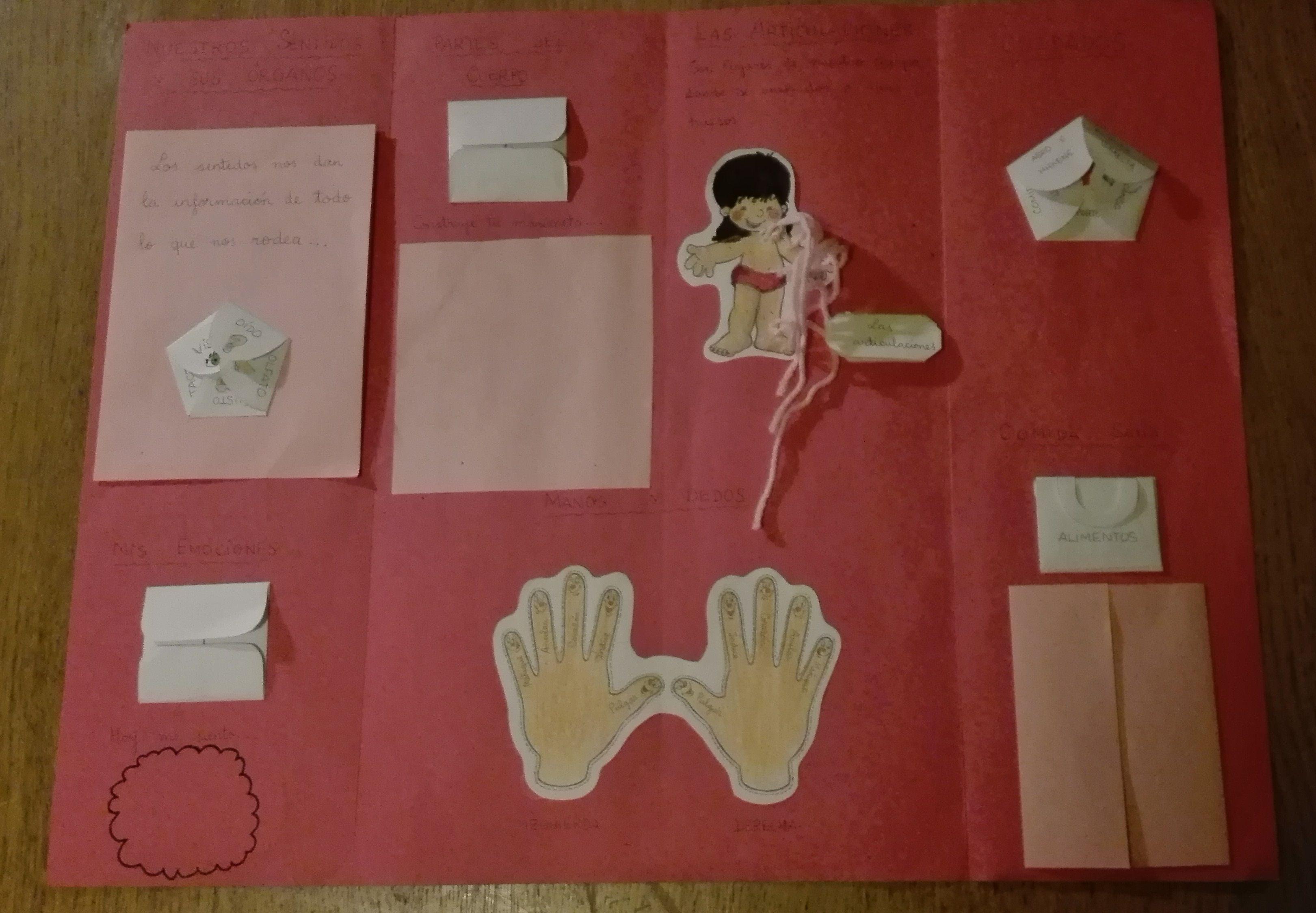 Lapbook del cuerpo humano