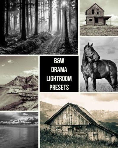 [Preset Lightroom] Dramatic Black and White - bonplanphoto
