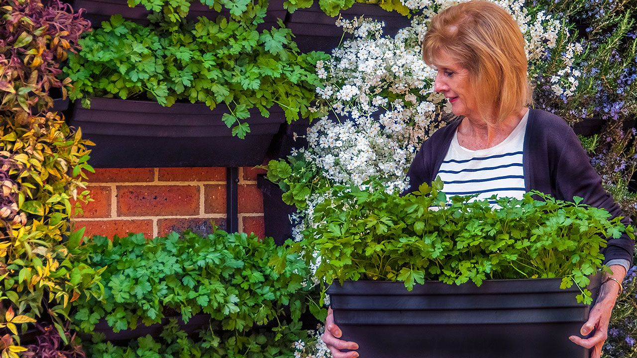 Wallgarden Is A DIY Vertical Garden Solution.