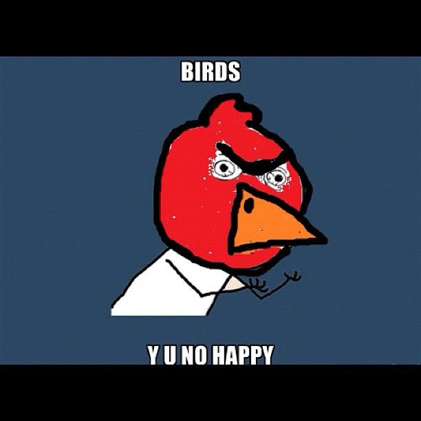 But Y angry birds?