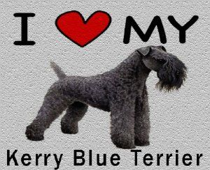 I Love My Kerry Blue Terrier Cutting Board - Great For Kitchens by MyHeritageWear. $34.95