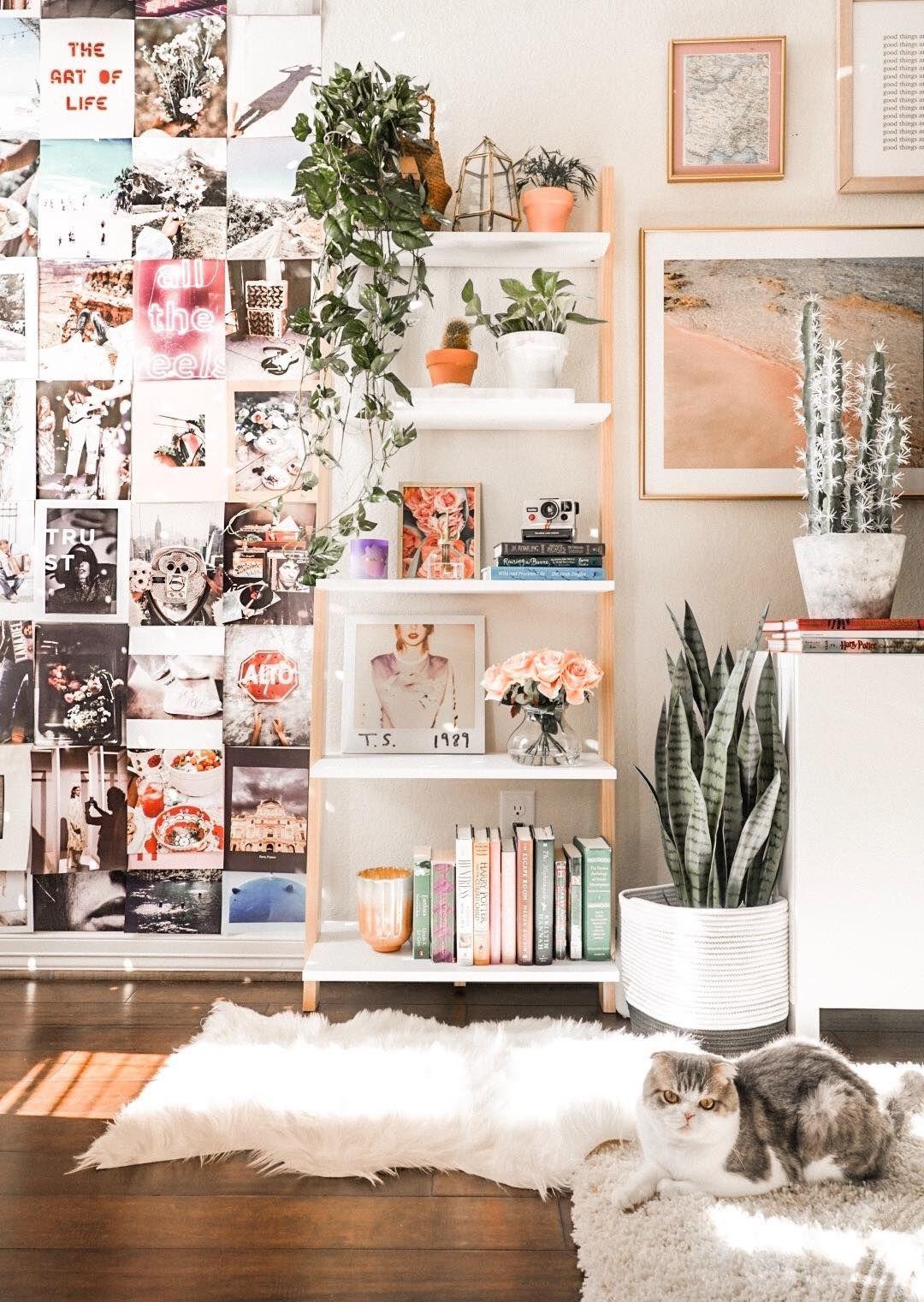 30+ Fake plants room decor info