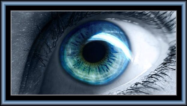 Blue Eyes Lipid Pools Window to a Soul | EYES (They have IT