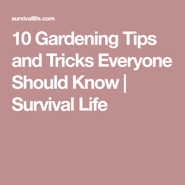 10 Gardening Tips and Tricks Everyone Should Know | Survival Life