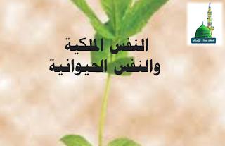 بث روح المودة والألفة ونشر الأخلاق المحمدية وتنقية التصوف الاسلامي Blog Blog Posts Post