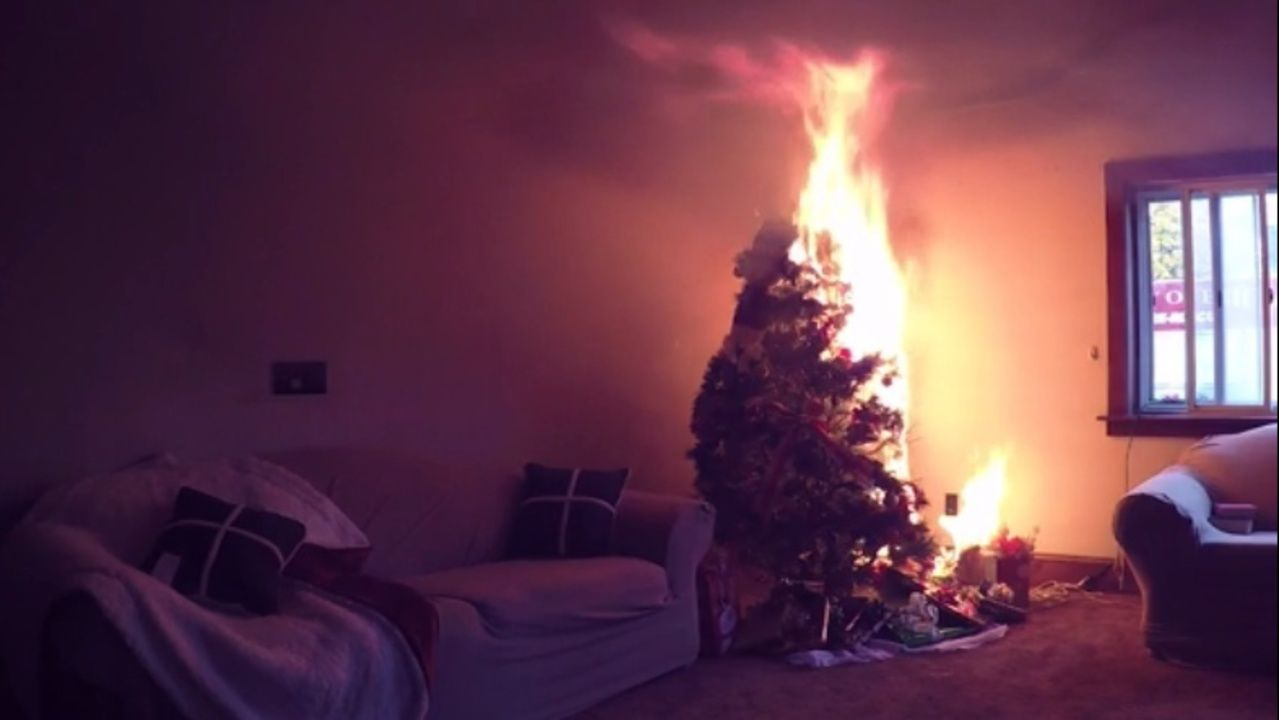 Preventing Christmas Tree Fires During The Holiday Season