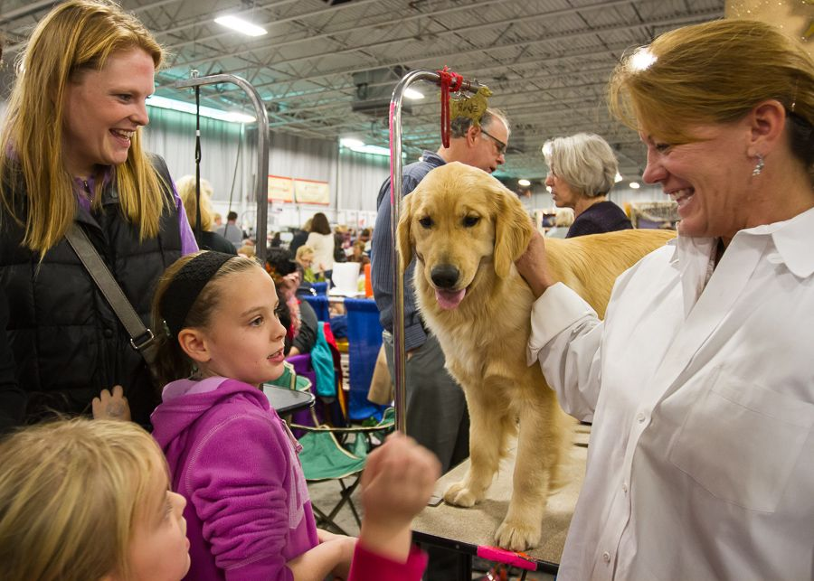 Pin By The National Dog Show On Behind The Scenes At The Nds
