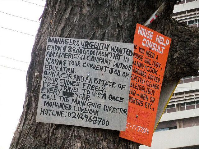 job advert on a tree