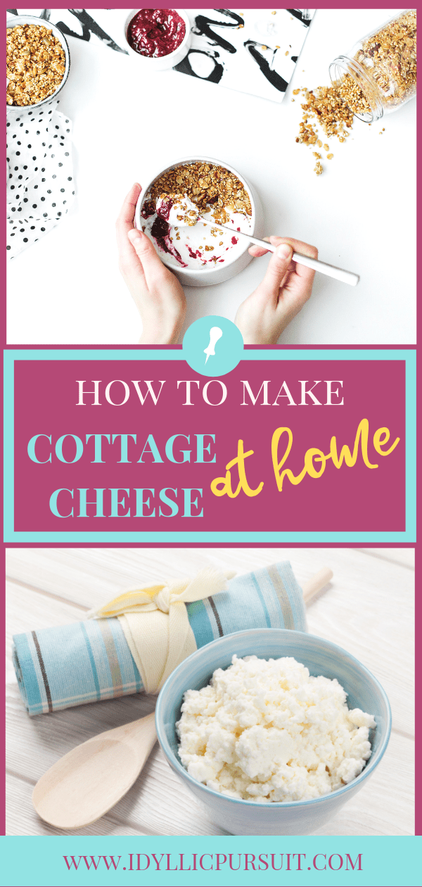 Homemade Cottage Cheese Recipe Homemade Cottage Cheese Healthy Snacks For Kids Homemade
