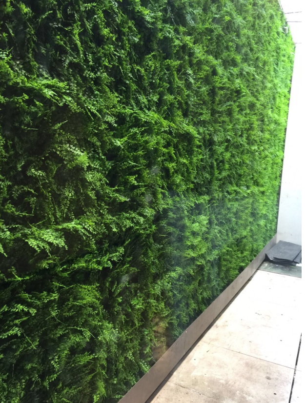 A Very Simple And Cost Effective External Artificial Living Wall  Installation. The Replica Plants Team Provided A Full Service Right Through  To Installation ...
