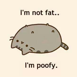 Pusheen is poofy