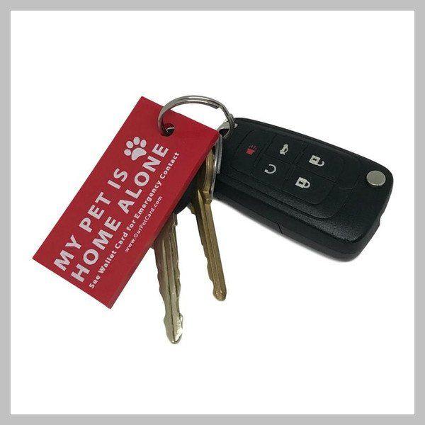 pet emergency keychain tag