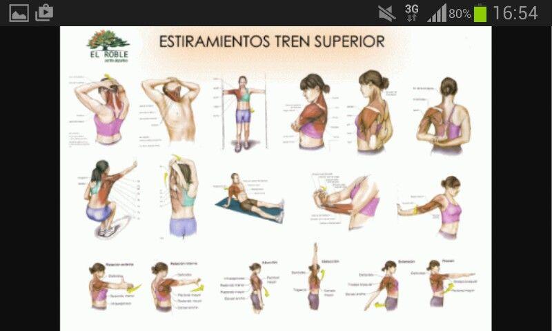 Estiramientos Tren Superior Estiramientos Ejercicios De Fisioterapia Ejercicios Para Dolor De Espalda