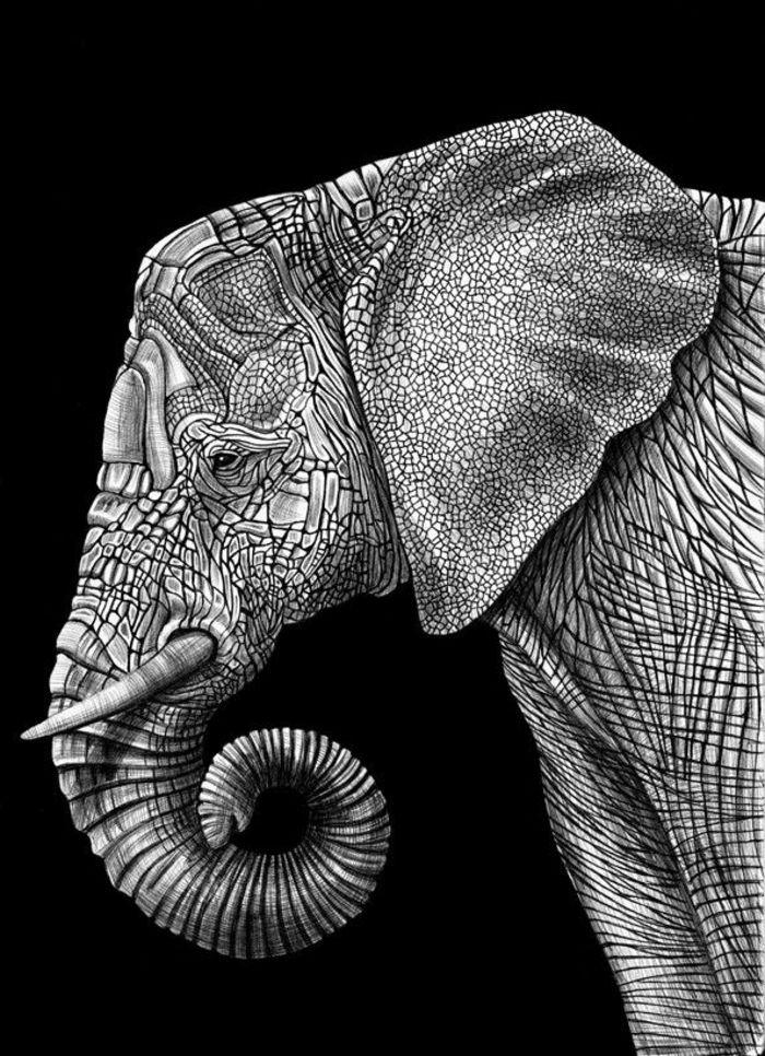 Majestic Elephant Bull Photo Exotic Wild Mammal Safari Decor Shower Curtain Set