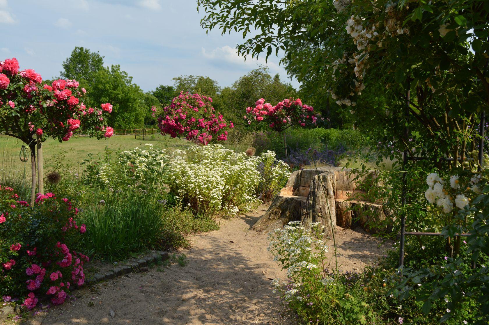 Botanischer Garten Dusseldorf