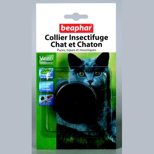 Traitement naturel anti-puce efficace   Chat puces, Anti puce, Produit anti puce