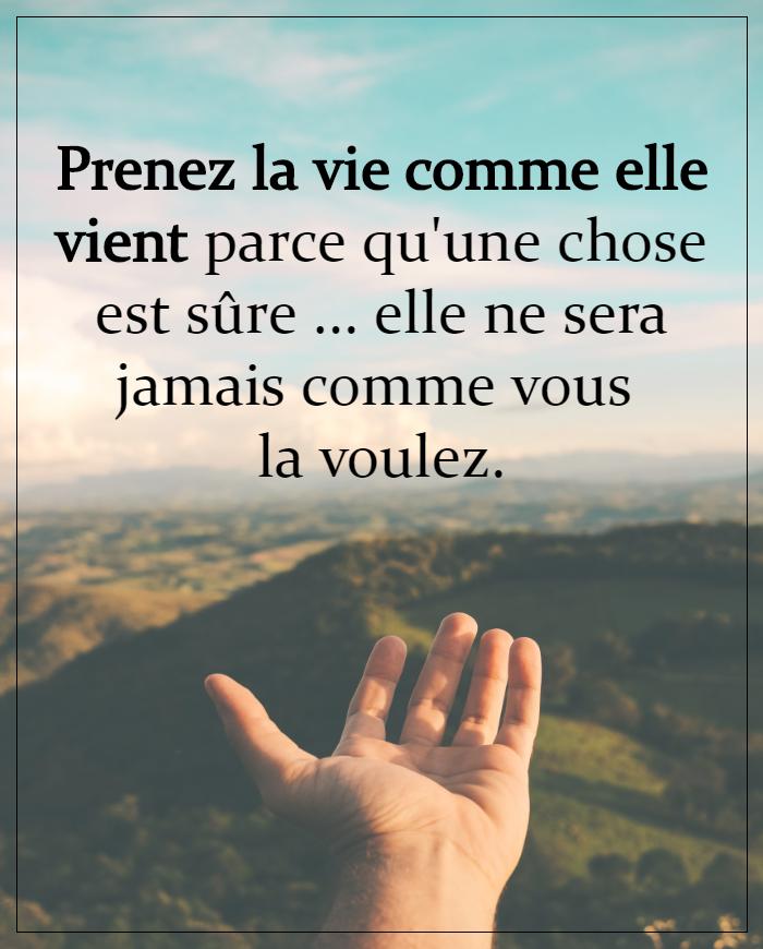 La Vie Comme Elle Vient : comme, vient, Prenez, Comme, Vient, Paroles, Sagesse,, Citation,, Citation, Pensée