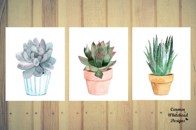 Succulent Trio Prints Potted Succulents Watercolor Cactus
