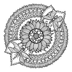 Display Image Coloring Pages Adults Mandala Dragonfly And Flowers