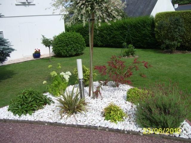 Massif avec palmier recherche google pinterest palmiers massif et jardins - Massif avec palmier ...