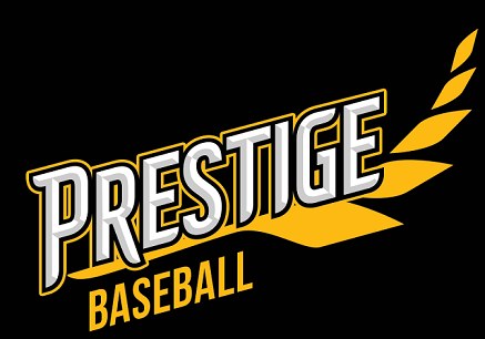 Prestige Baseball Travel Team Out Of Oak Lawn Il Travel Team Travel Baseball Teams