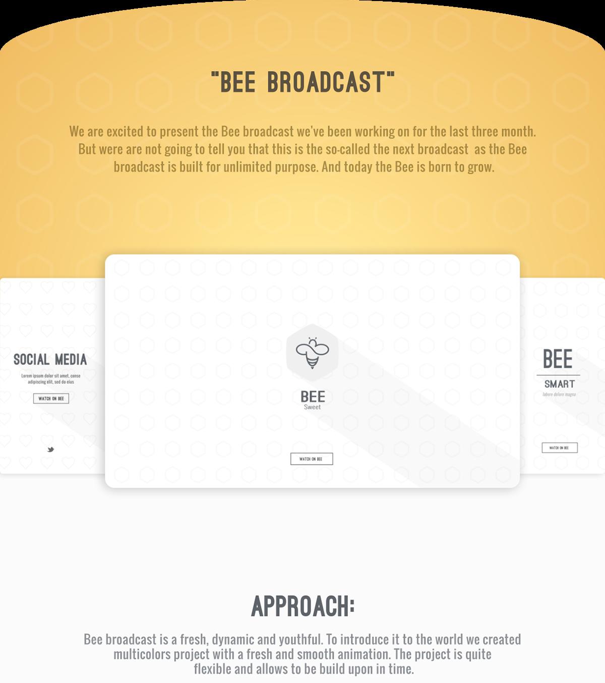 Bee Broadcast - TV Branding on Behance