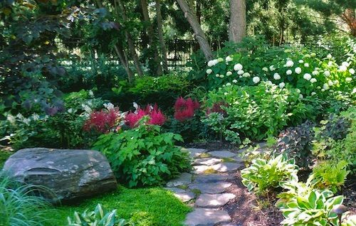17 best images about shade plant combinations on pinterest gardens design design and shade plants - Shade Garden Design Ideas