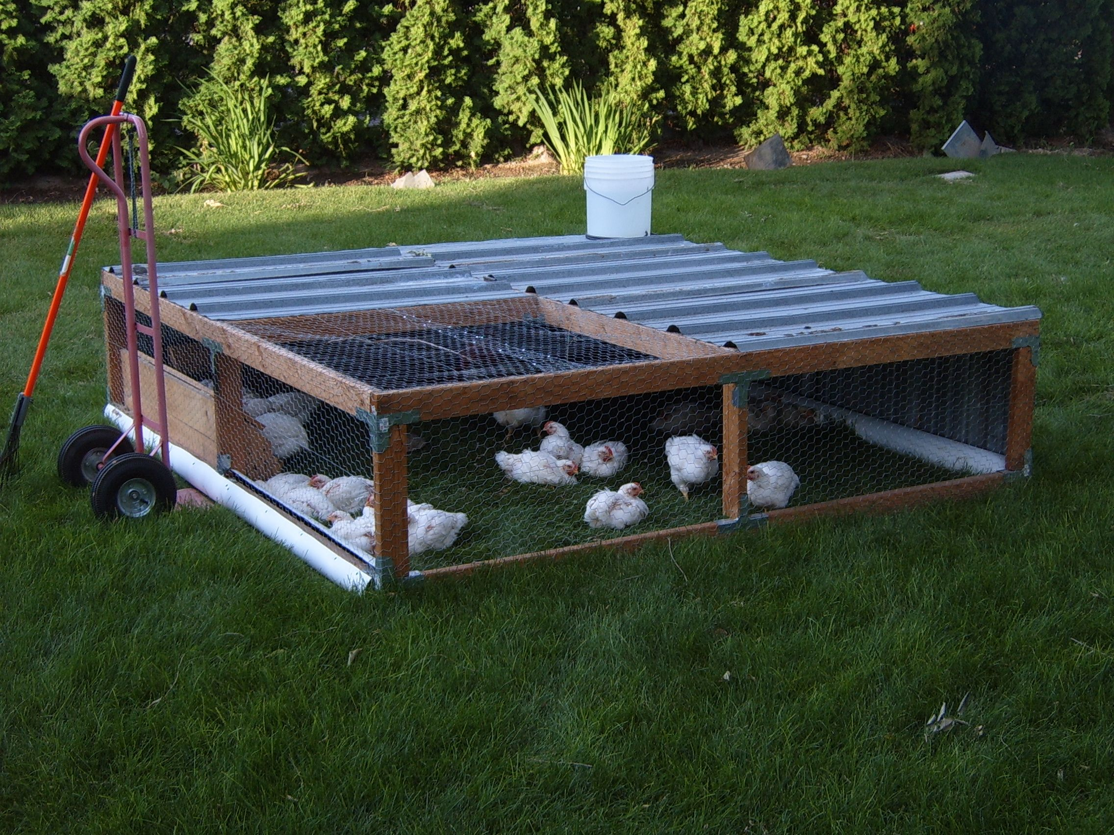 chicken tractor promised land outdoor creative spaces