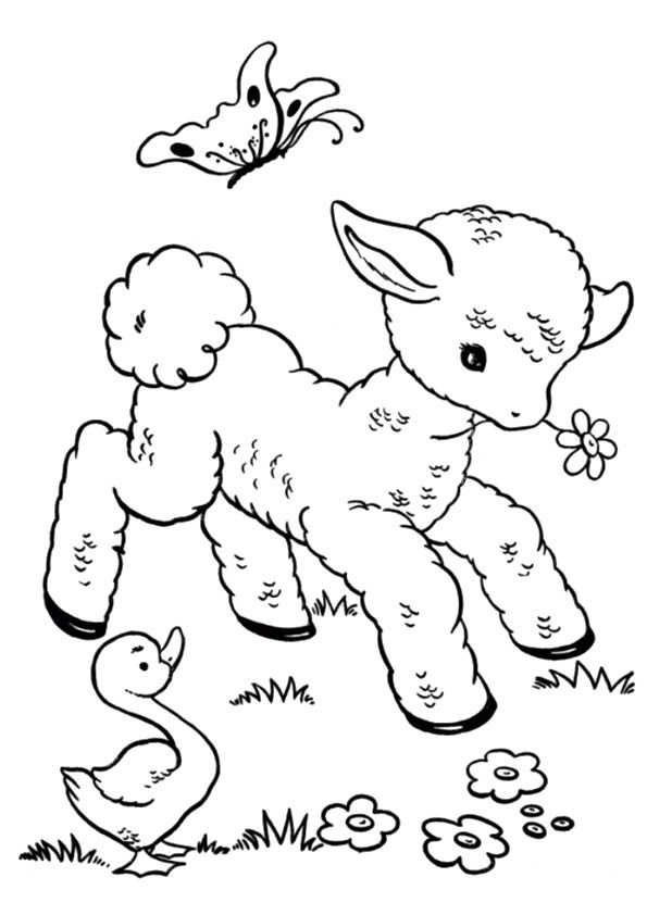 print coloring image | Pinterest | Funny sheep, Embroidery and Patterns
