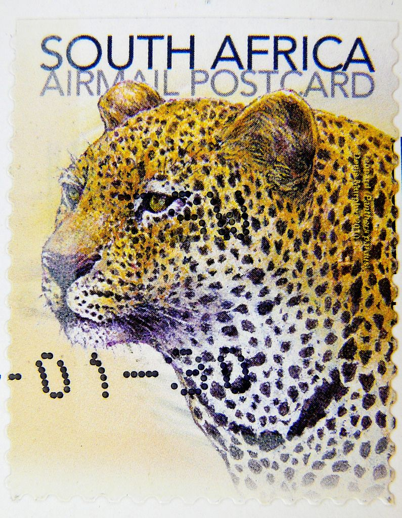 Great Stamp South Africa Rsa Postage Postcard Leopard Pa Flickr Stamp Panthera Pardus Cat Stamp