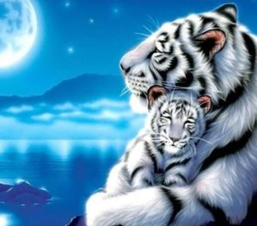 Adorable 5D Diamond Painting Full Drill White Tiger 🐯 Save the pin and click through to get more inspirations now! #homedecor #painting #paintwithdiamonds #diamondart #diamondpainting #diamondpaintingaddict #diamondpaintinglovers #diamondpaintingdiy #5ddiamondpainting #diycrafts #crafts #craftideas #craftsforkids #craftprojects #diygifts #artpainting #artdesign