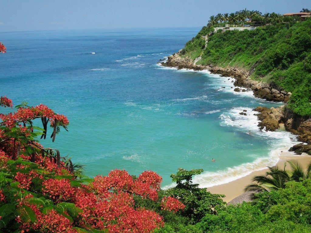 Playa carrizalillo se ubica en puerto escondido en la costa oaxaque a oaxaca m xico ideas - Viajes a puerto escondido ...