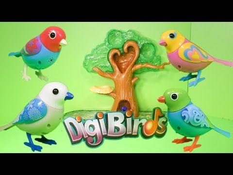 DIGIBIRDS Digital Singing Birds TheEngineeringFamily