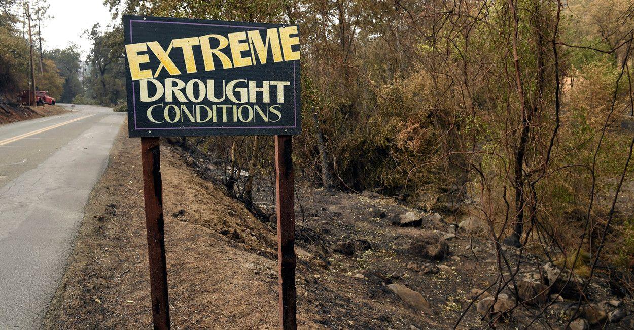 California's Drought: Not an Environmental Problem. An Environmentalist Problem.