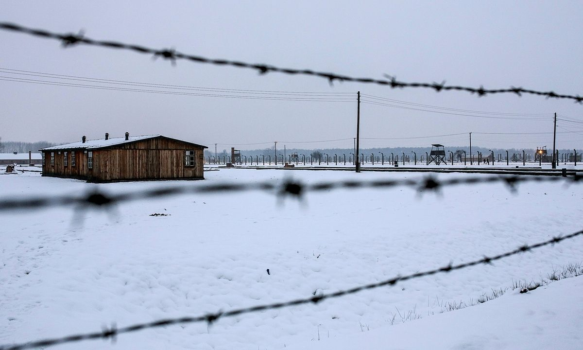 German court declares 95-year-old Auschwitz paramedic fit for trial | World news | The Guardian