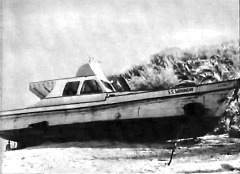 Newton Minnow Gilligan S Island