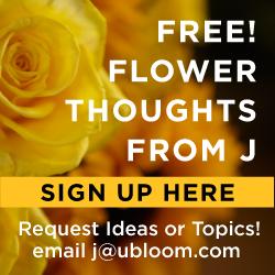 How to Arrange garden flowers using an überMatte Vase