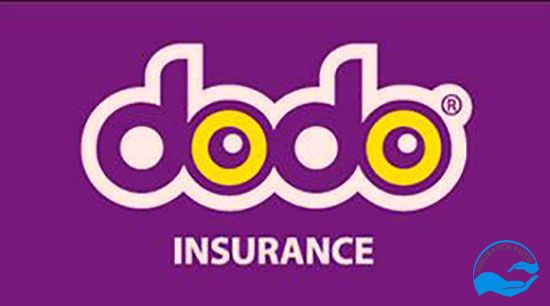 Dodo car insurance quote | Car insurance, Best quotes ...