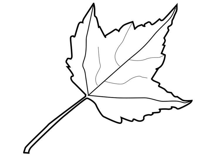 Dibujo para colorear hoja | ESTACIONES DEL AÑO | Pinterest | Dibujos ...