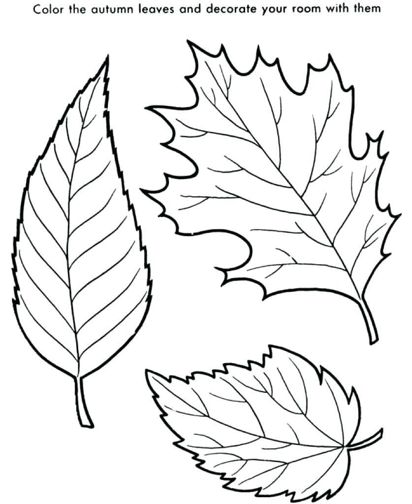 Awesome Coloring Page Leaf That You Must Know You Re In Good