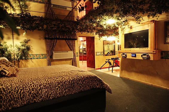 Jungle Theme Bedroom For Adults | Jungle Themed Bedroom For Adults