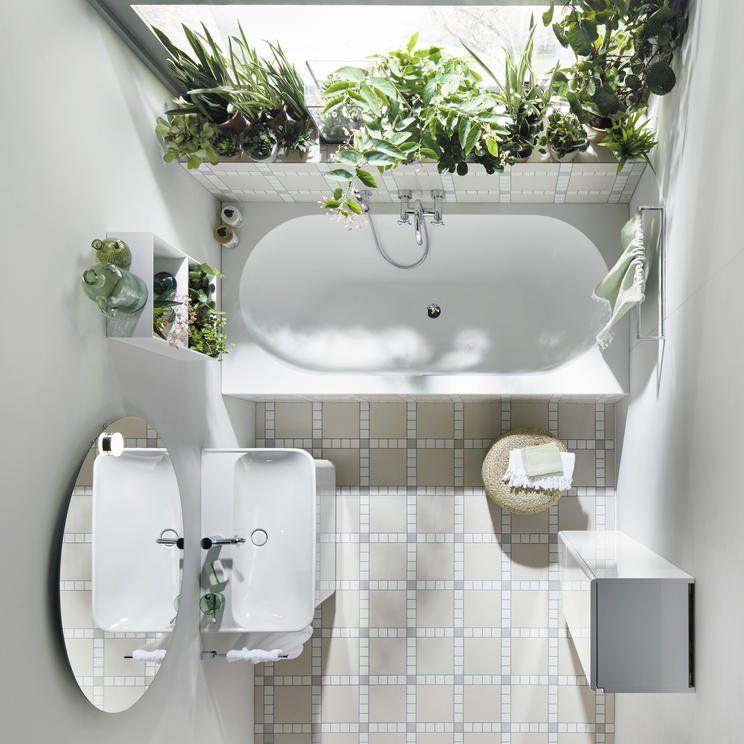 Die besten Pflanzen fürs Badezimmer #zimmerkleineinrichten