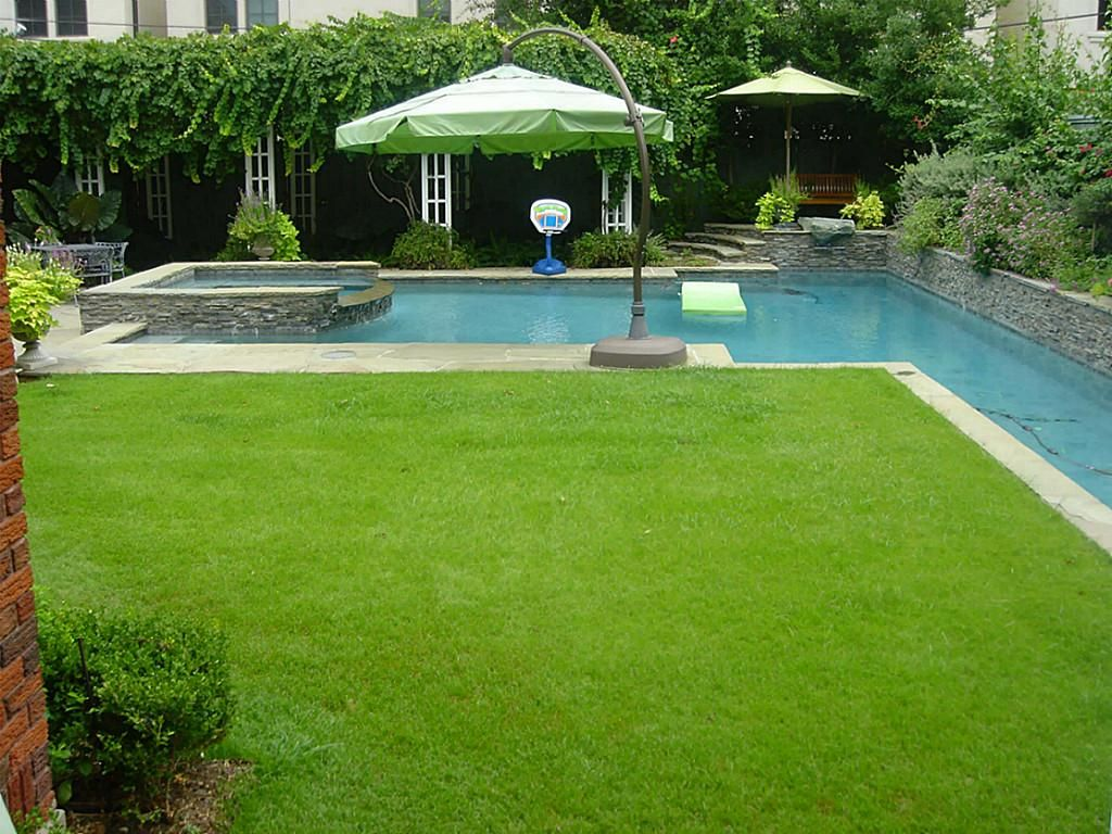 The Backyard Oasis With Lush Grass Yard And Resort Style