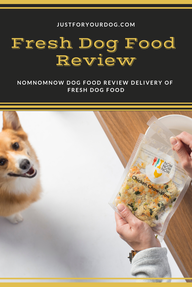 Nomnomnow Dog Food Review Is Nomnomnow Really Good For Your Dog