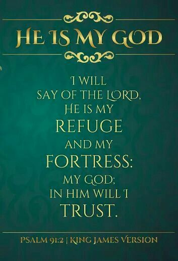Image result for psalms 91:2 kjv