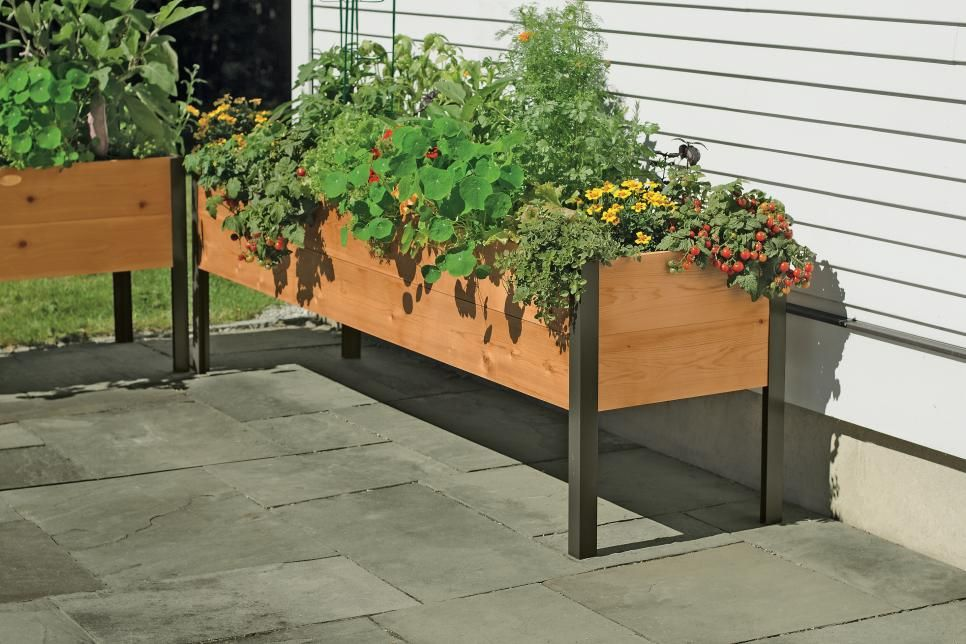Great Garden Gifts For Every Type Of Gardener